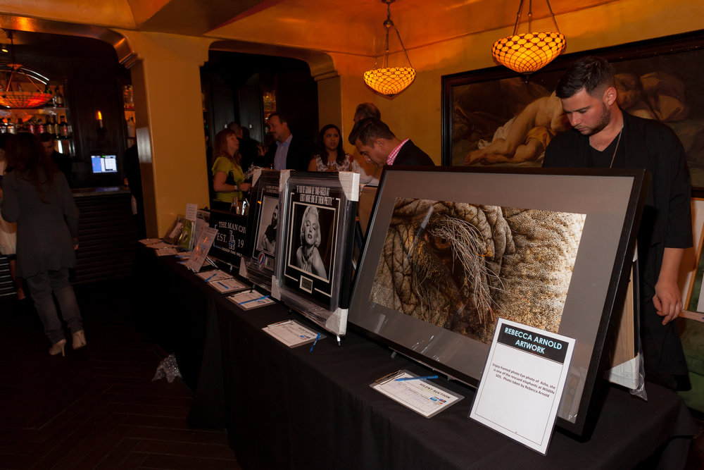 Rebecca'a Eye of Asha in silent auction fundraiser