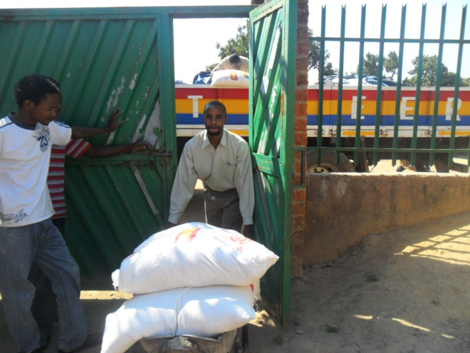 Stanley helping the boys to offload 25 Kg sacks of mealie meal from a CHAT Milling Company truck