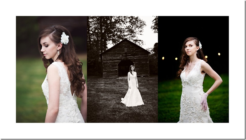 North Carolina Wedding Photographer Bridal Portraits by Revival Photography