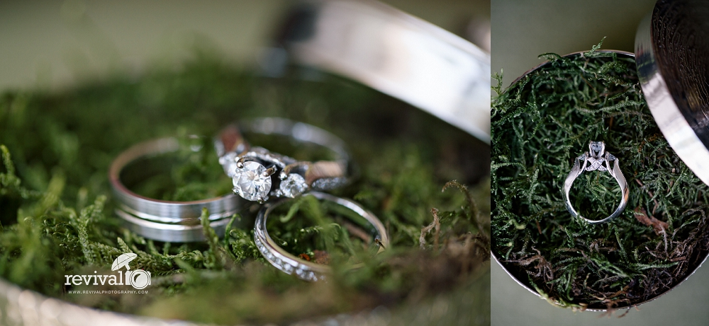 Earthy Elegant Wedding Rings Photos by Revival Photography Wedding at the Highland Lake Inn in Flat Rock NC Wedding Photos by www.revivalphotography.com
