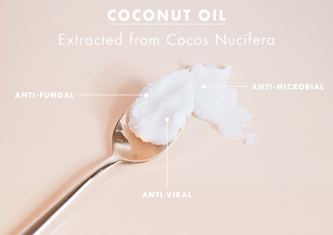 The Power of Organic Coconut Oil