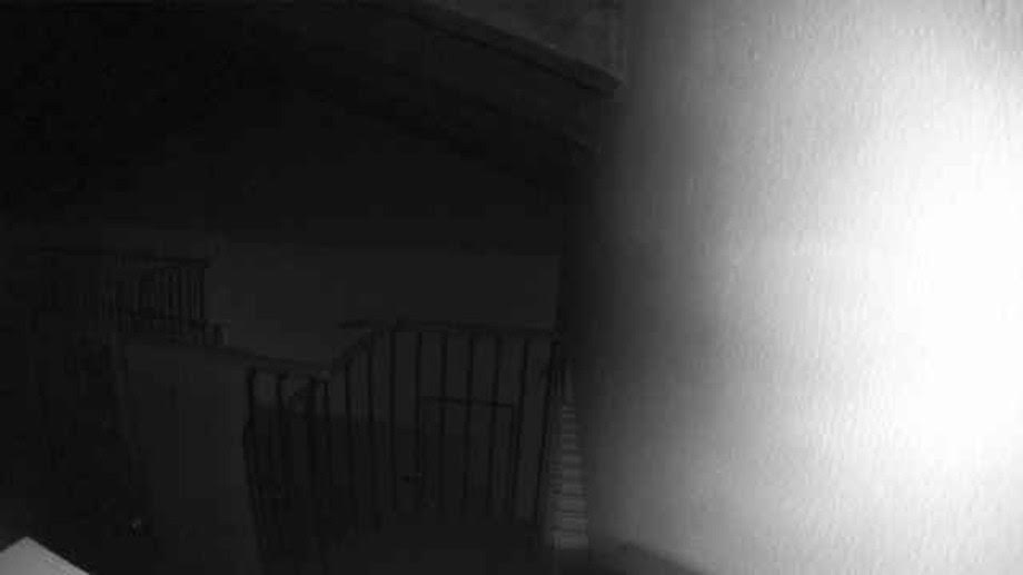 Your Attic camera noticed an activity at 3:00 a.m. on 02.01.19.