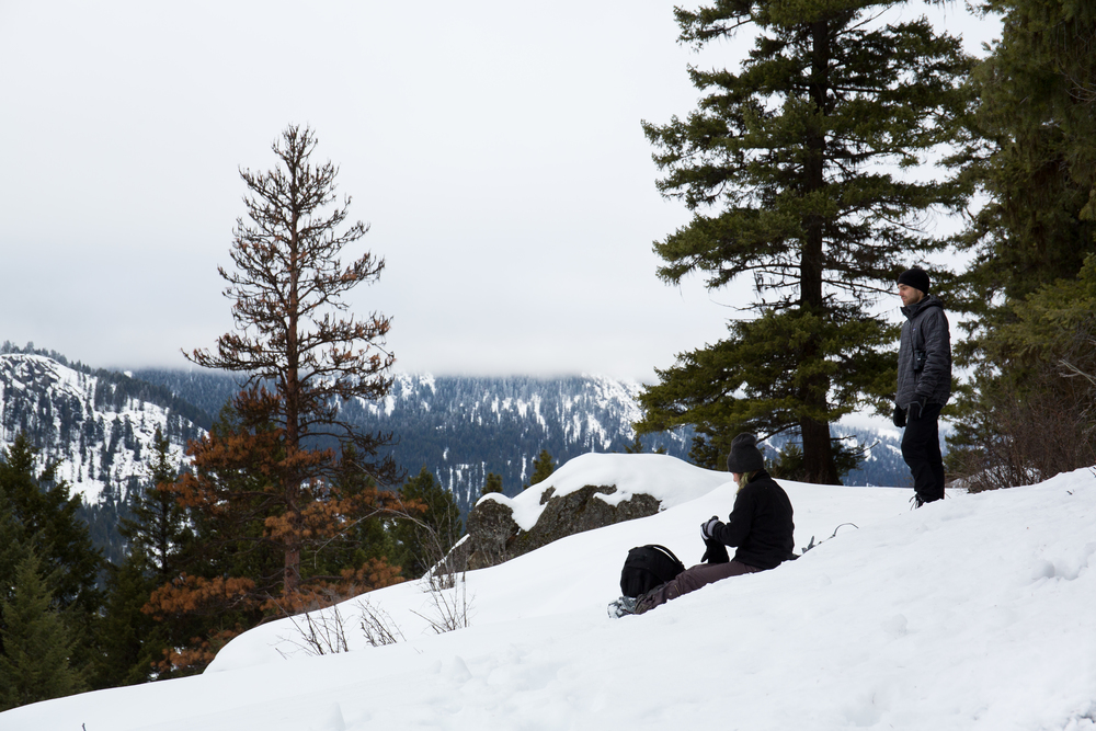 WDL crew scan a valley in the so-called province of British Columbia, where guide outfitters traverse to kill cougars, lynx and bobcats. Photo credit- Sam Edmonds