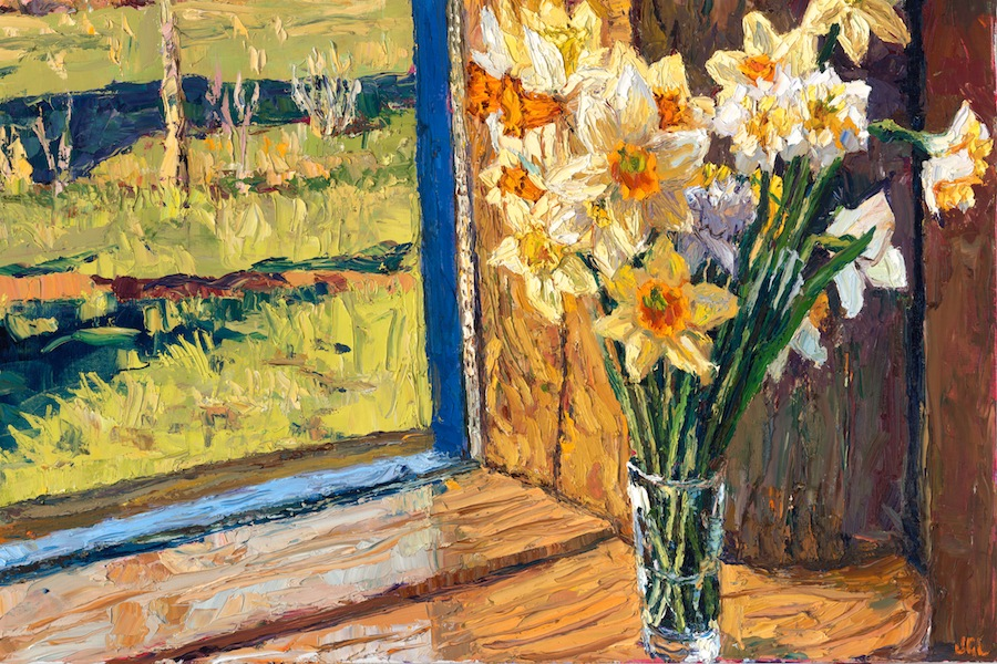 Springtime longing, Sweet Daffodil