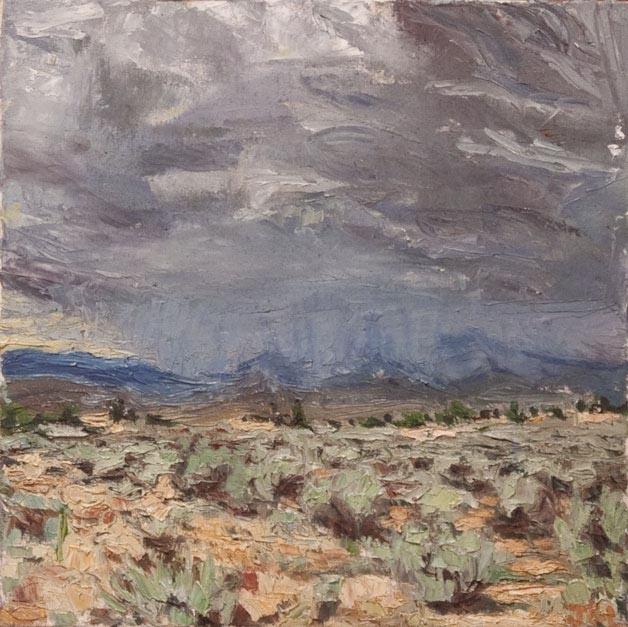 Picuris storm