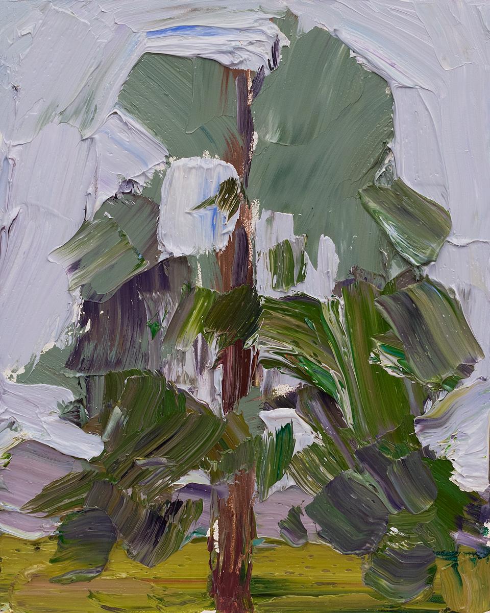 Lone Tree #11 - rain palette study