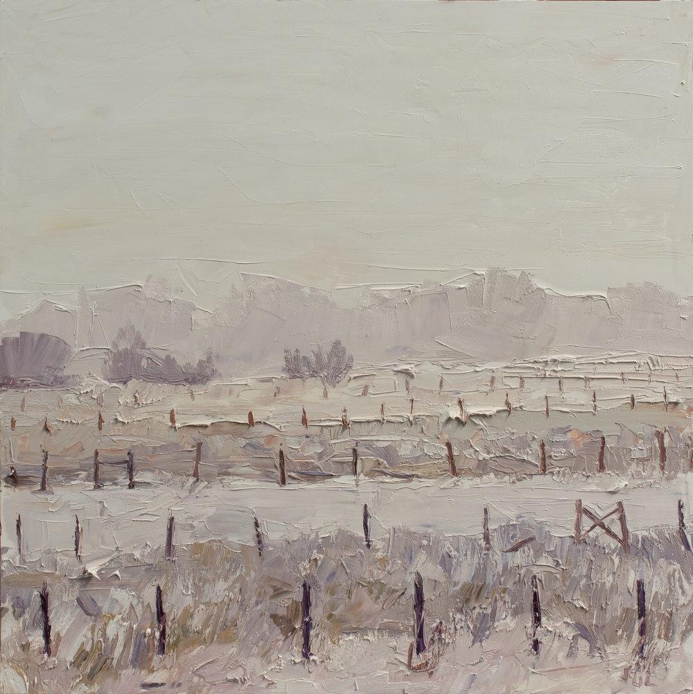 Fences #3 - winter palette