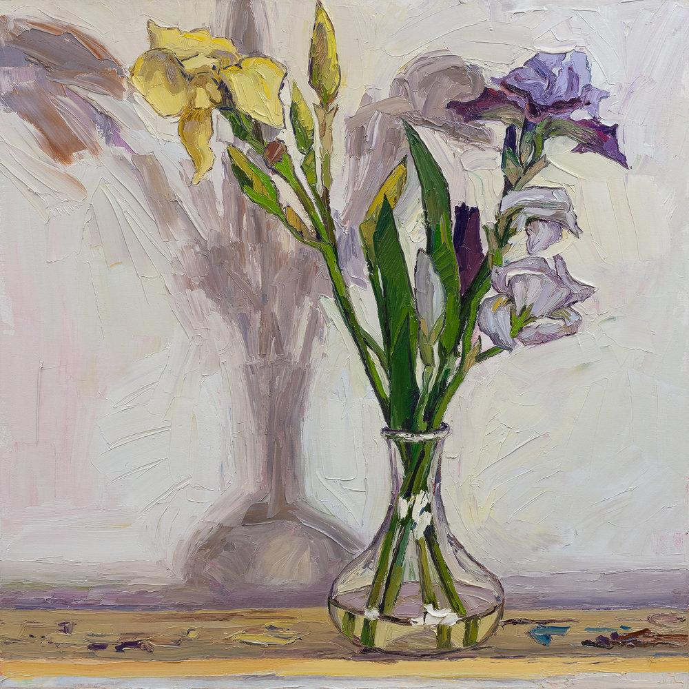 North light and irises