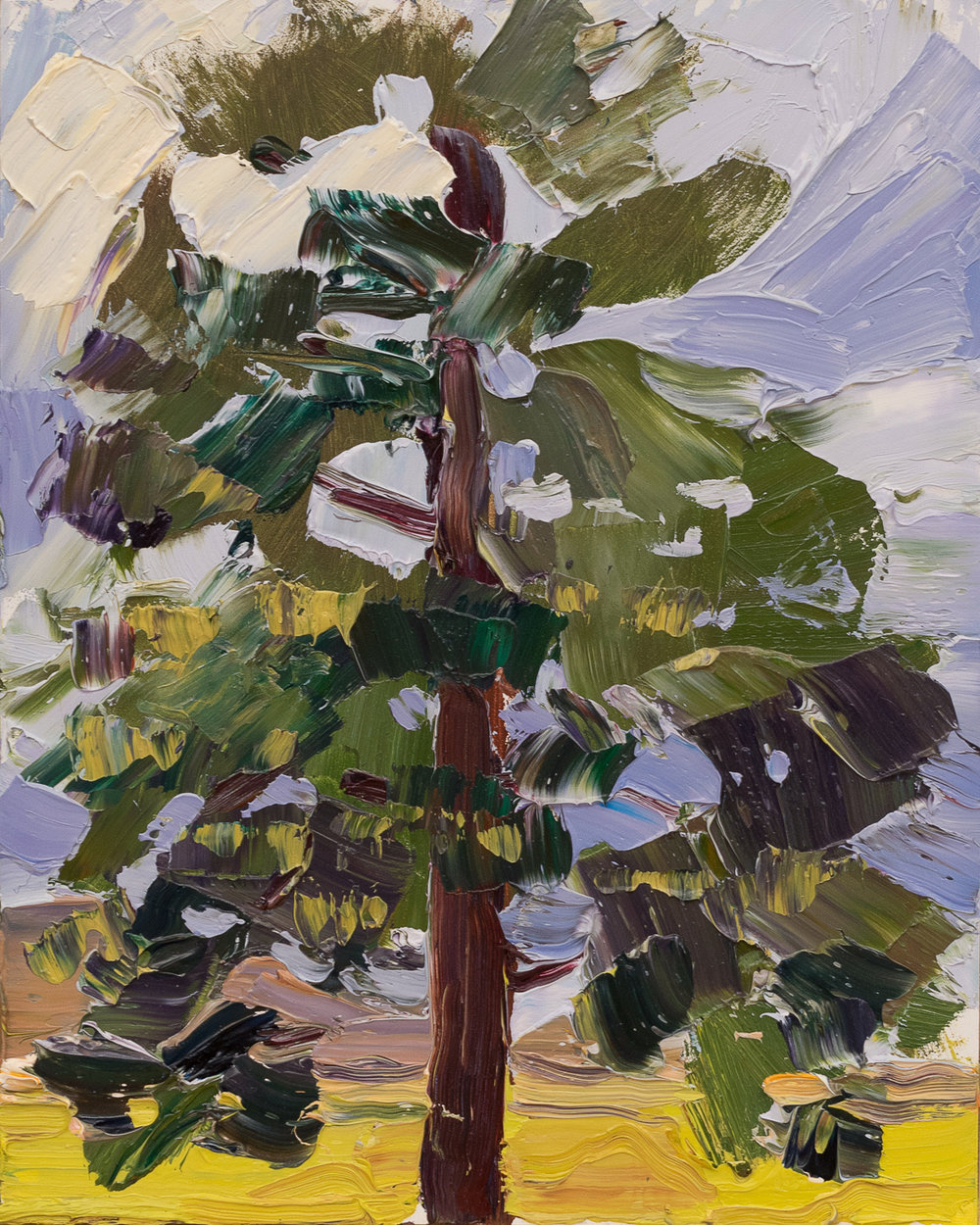Lone Tree #10 - after rain palette study