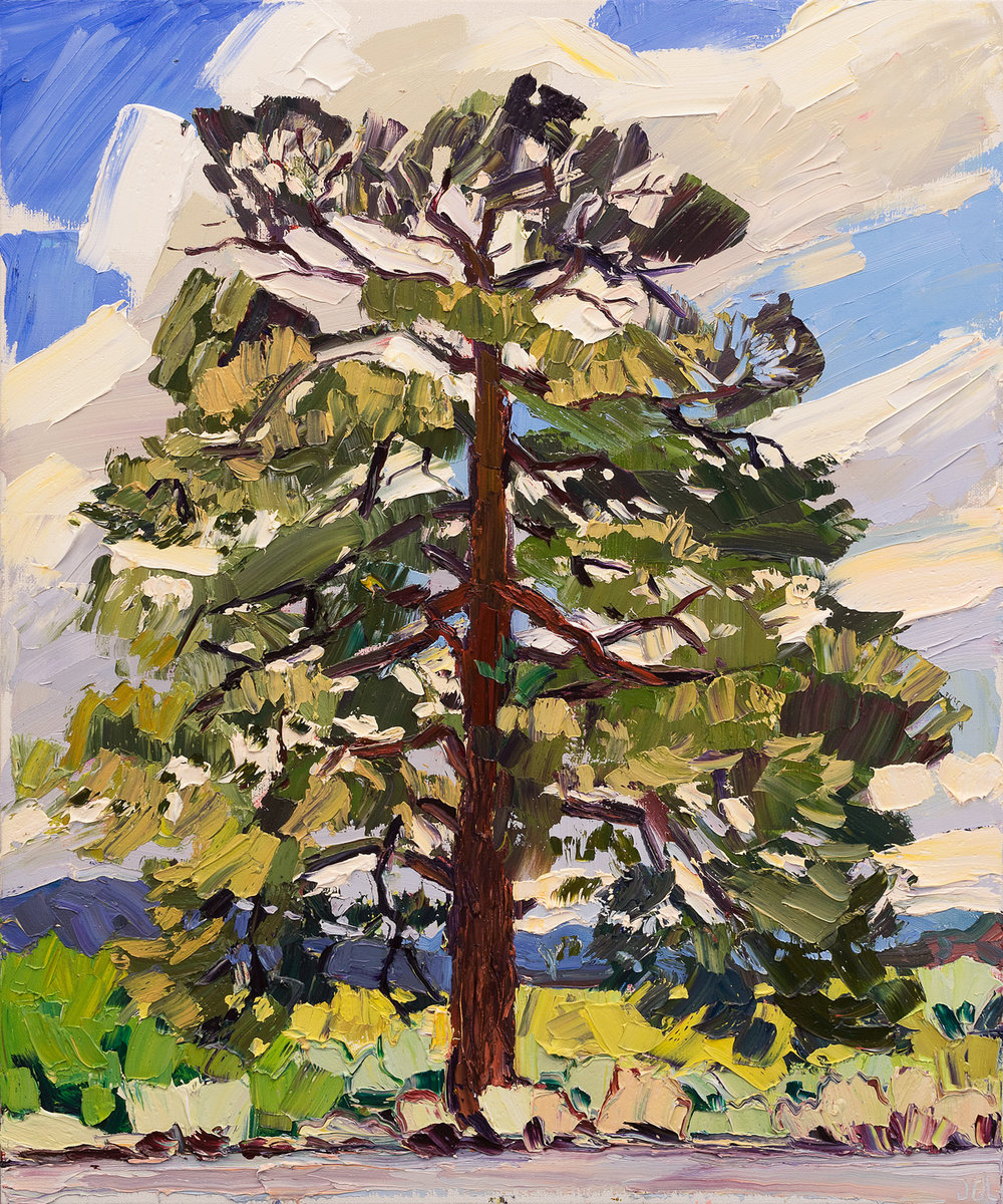 Lone Tree #8 - Eagle's nest