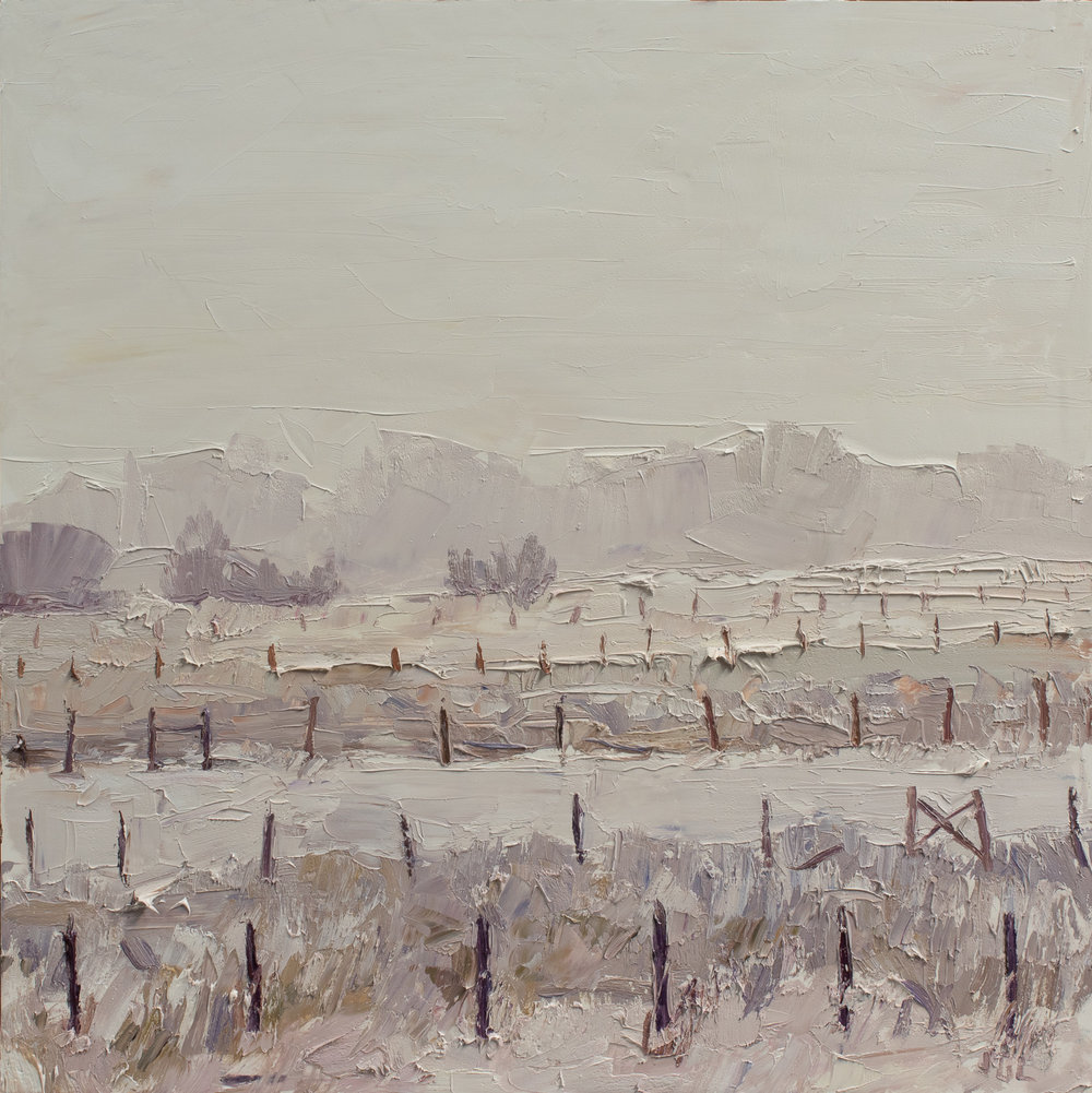 Fences #3 - winter palette