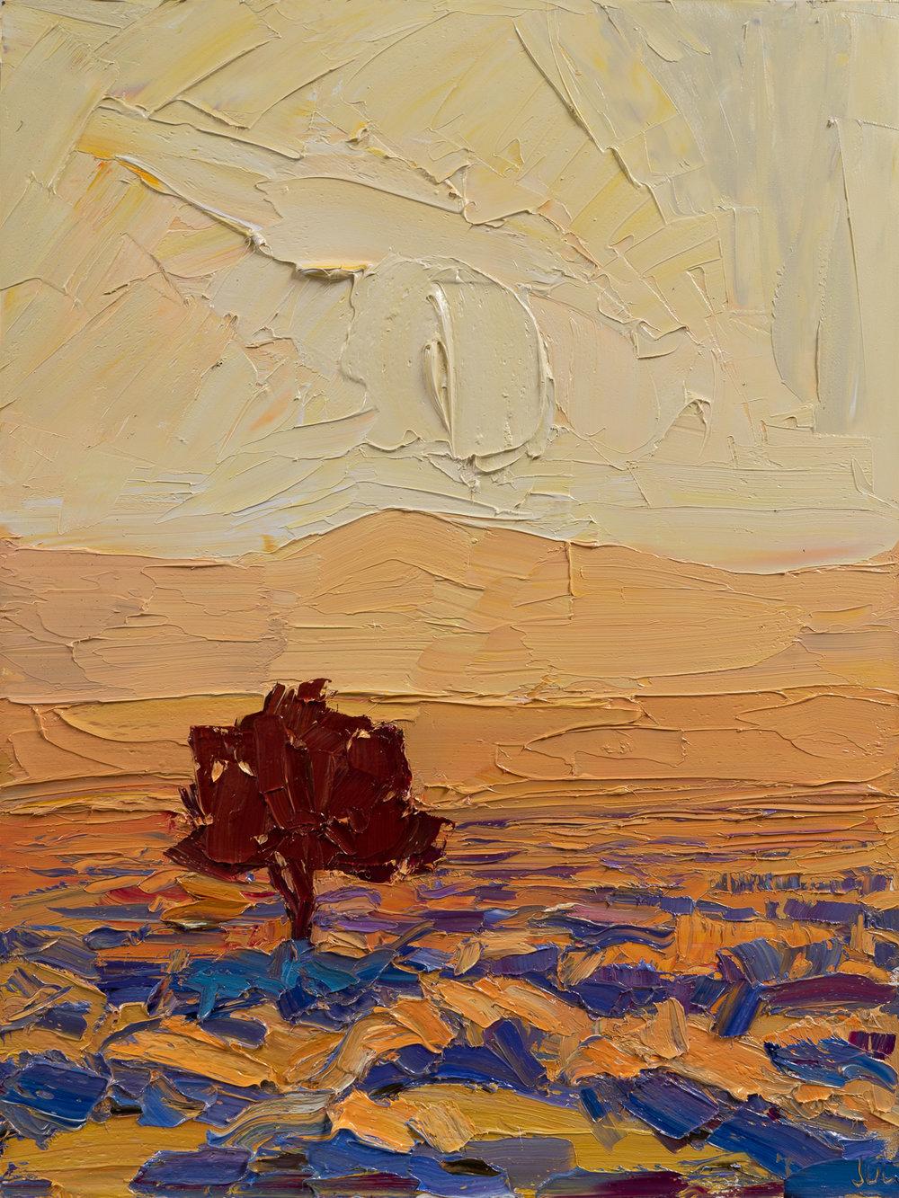 "The ""lone piñon"" at sunset"