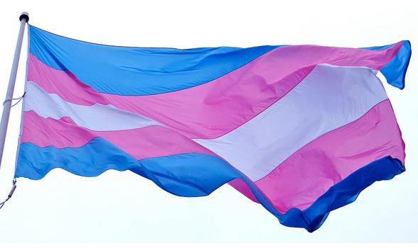 transallyflag