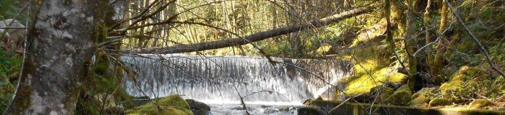 holland creek 1.jpg