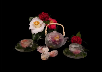 Niki Hill                                                                                      Camellia Ice tea 'Punch'                                                      Duratran, LED Light box (Ltd ed. of 3)                                           841 x 596 x 75 mm, 2014