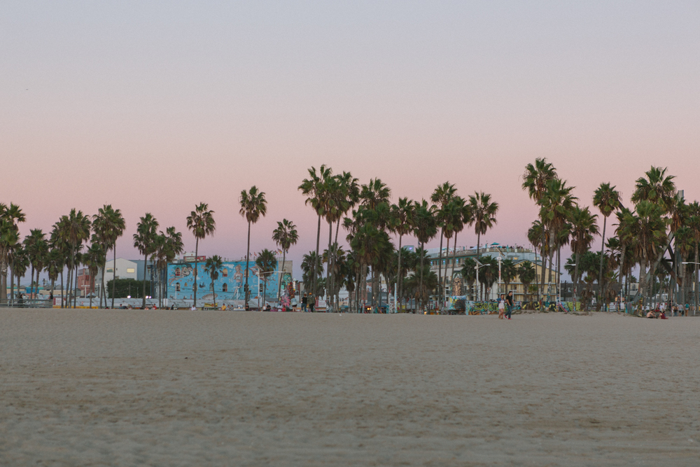 The colorful Venice Boardwalk.