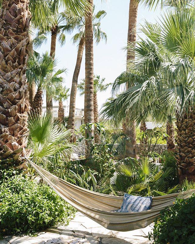 "I can't imagine a better place to unplug. @twobunchpalms for Endless Vacation's ""Sun and Snow in Socal"". Thank you @pamash! . . . . . . .  #visitpalmsprings #palmsprings #palmspringsbound #desertlife #palmspringsgetaway #californialiving #palmspringsliving #visitgps #wellnesstravel #dametraveler #petitejoys #theeverygirl #darlingescapes #beautifuldestinations #theprettycities #artofvisuals #livethelittlethings #mytinyatlas #goopgo #luxuryresort #luxurytravel #twobunchpalms #hotsprings #mineralwater #traveldeeper #hotelsandresorts #beautifulhotels"