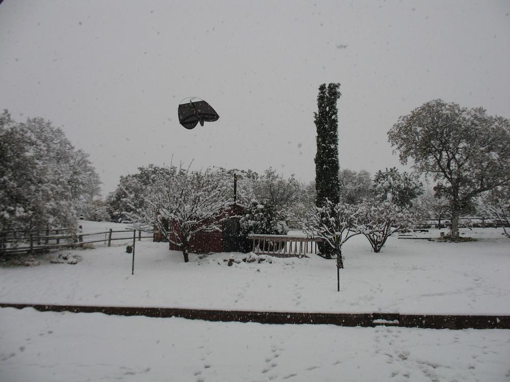 Snow Flyer.....