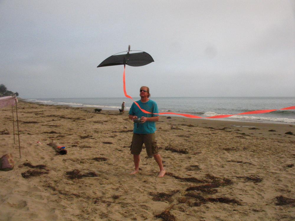 Beach Flyer.....