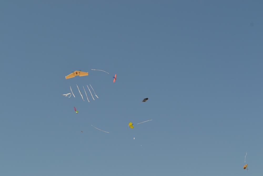Air Races_20140807_052.JPG