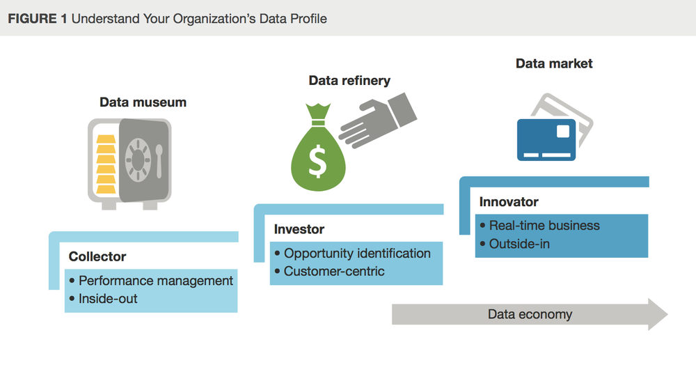 Understand Your Organization's Data Profile