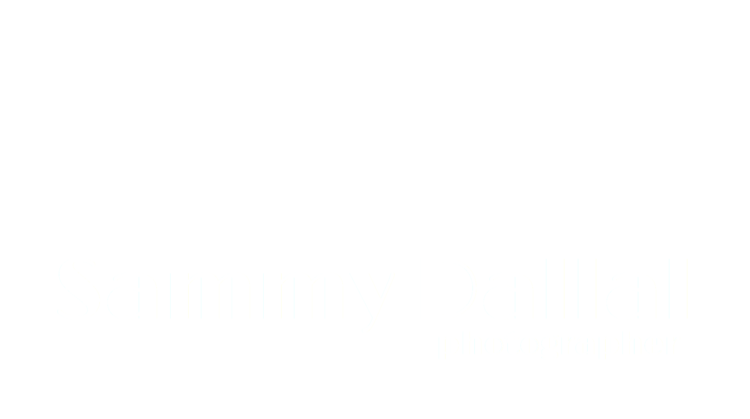 Sammy Dallal | Visual Journalist