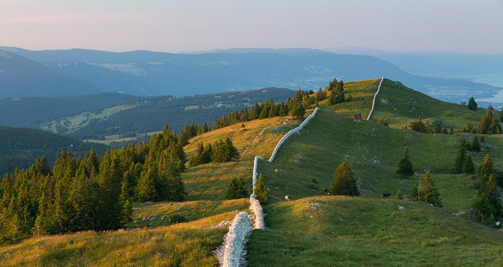 Le mont Tendre