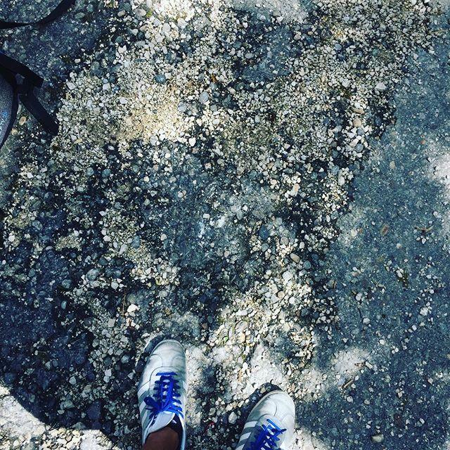 Selbst ein verwaschener Boden hat seinen Reiz 😃👍