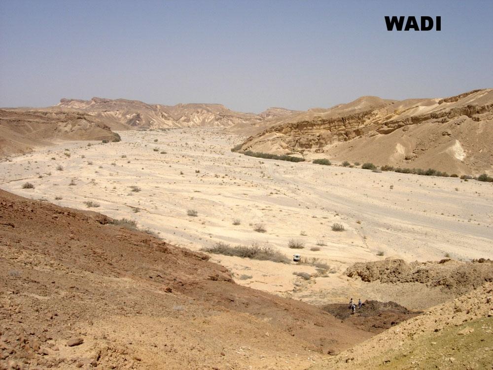 wadi.jpg