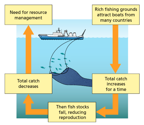Fishing and resource management