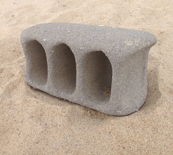 beach erosion brick coasts.jpg
