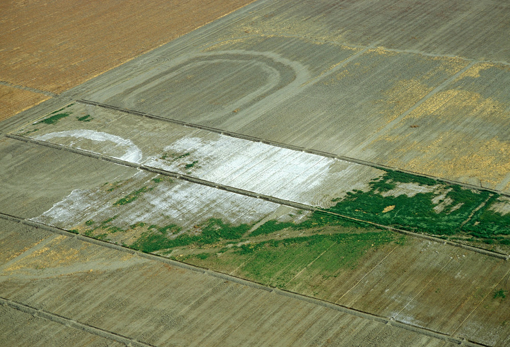 Soil salinisation in California resulting from irrigation