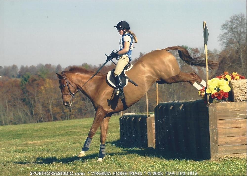 REPURPOSING THE RACE HORSE