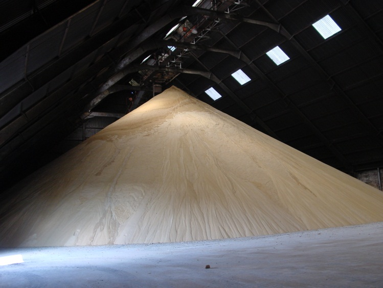Bulk Raw Sugar in BSI's Warehouse