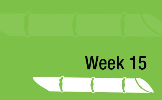 Week 15.jpg