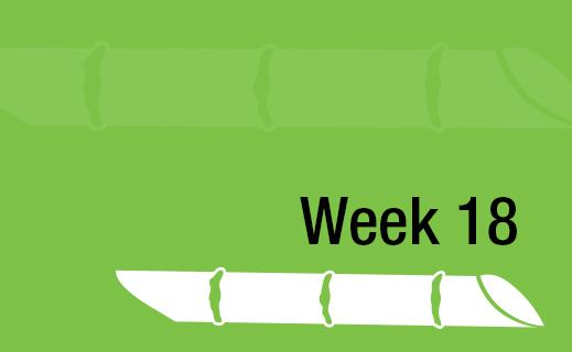Week 18.jpg