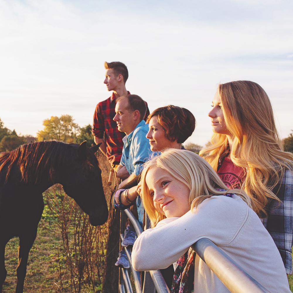 SWEET HORSE FARM