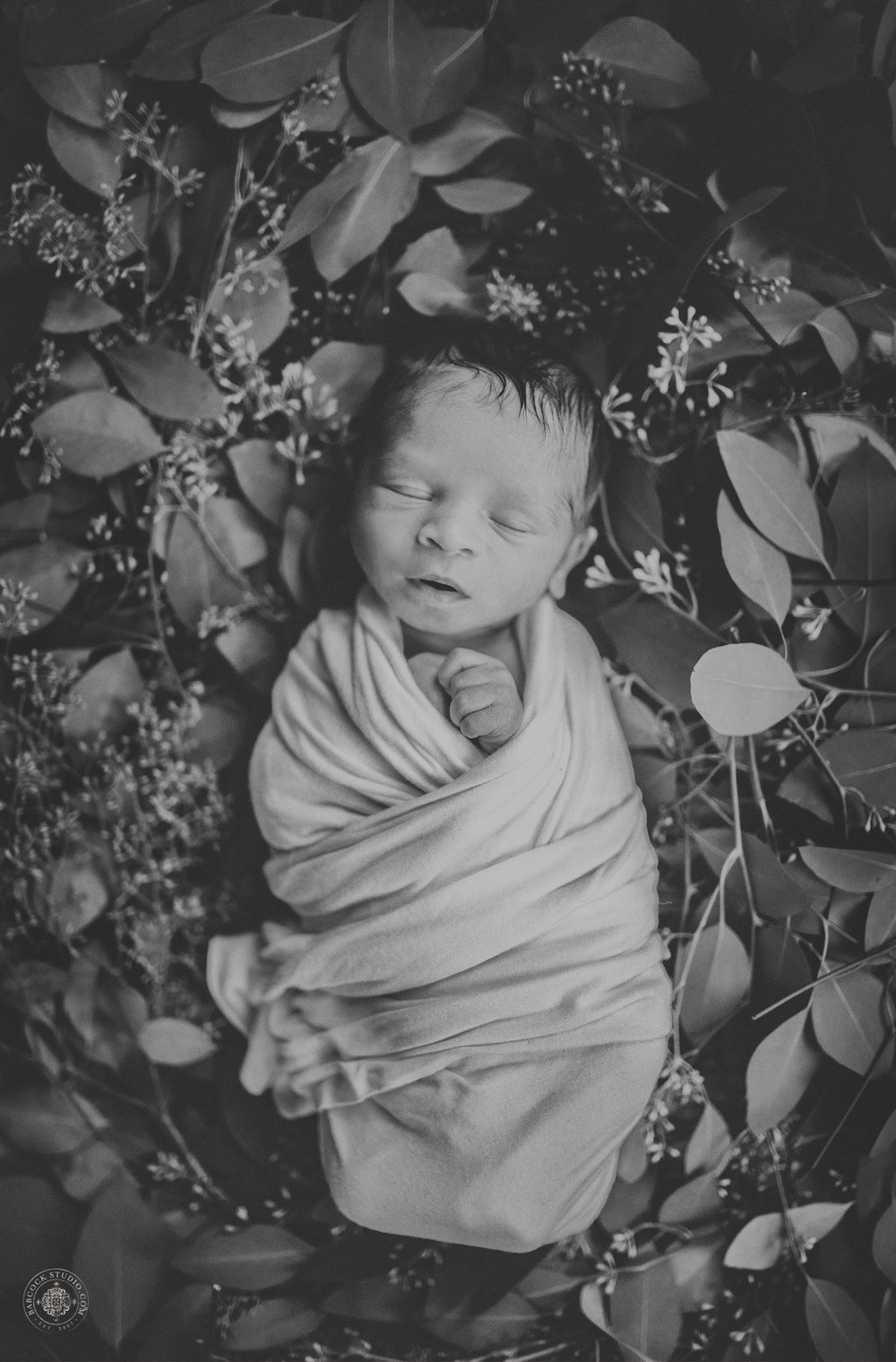 watras-newborn-2017-baby-photographer-dayton-ohio-.jpg
