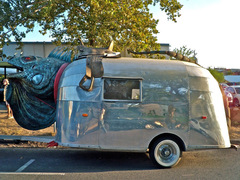 The Iguana Mobile