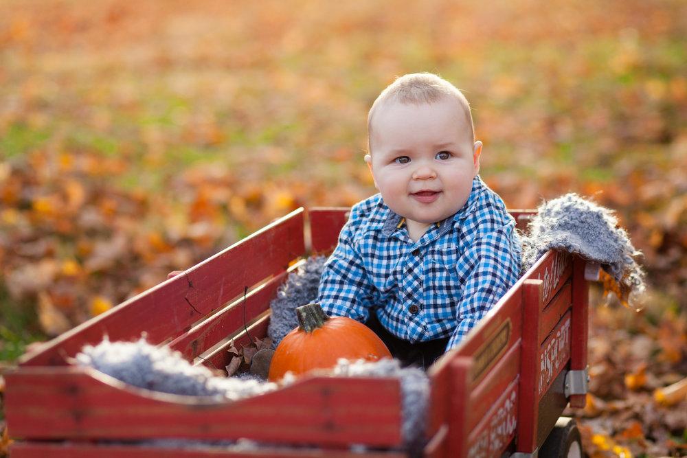 Rogers Family Fall 2014-PASS-0033 (1).jpg