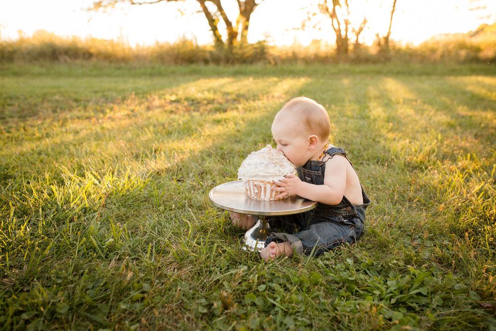 Columbus Baby Photographer   Sarah Cropper Photography   Grove City Ohio Photographer   Columbus cake smash