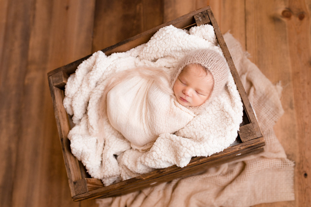Mom and dad's special crate request turned out so darling! I have plenty of props in my Grove City newborn studio but I always love being able to combine my props with a special family item.