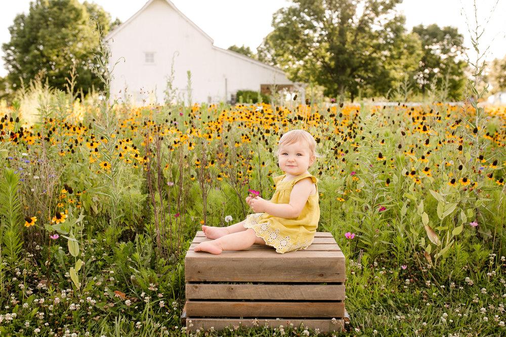 baby-milestone-photo-session-at-homestead-park-ohio.jpg