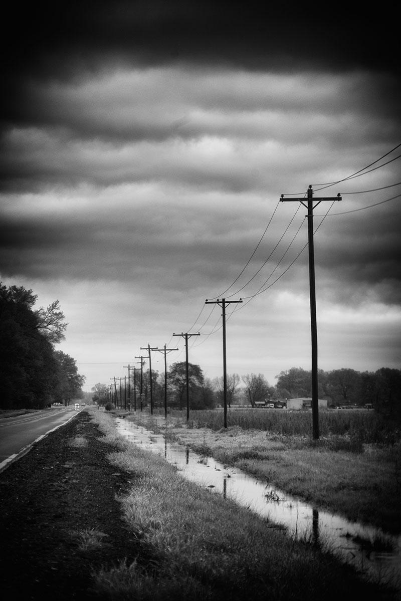 Image 39 -©Sandy LeBrun-Evans