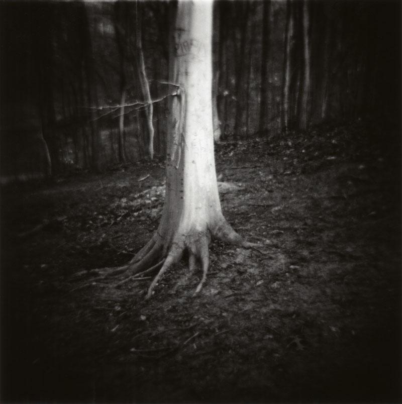 Image 45 -©Karen Keating