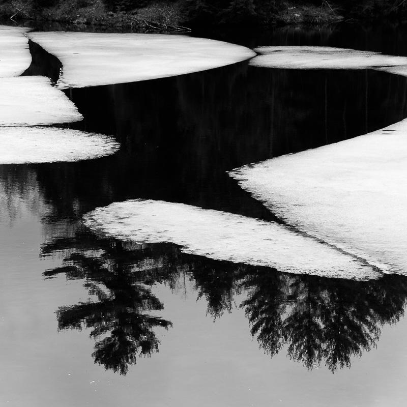 Image 60 -©E. E. McCollum