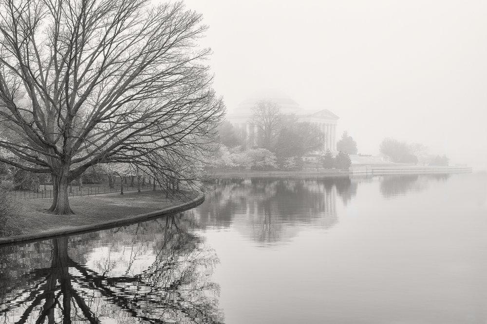 01-Foggy Tidal Basin