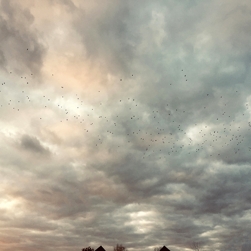 12-skyscape.jpg