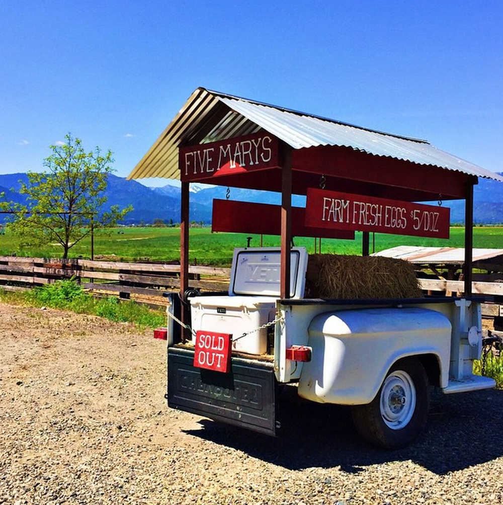 Five Marys honor system roadside Egg Stand on our ranch in Fort Jones, CA. Stop by for a visit!
