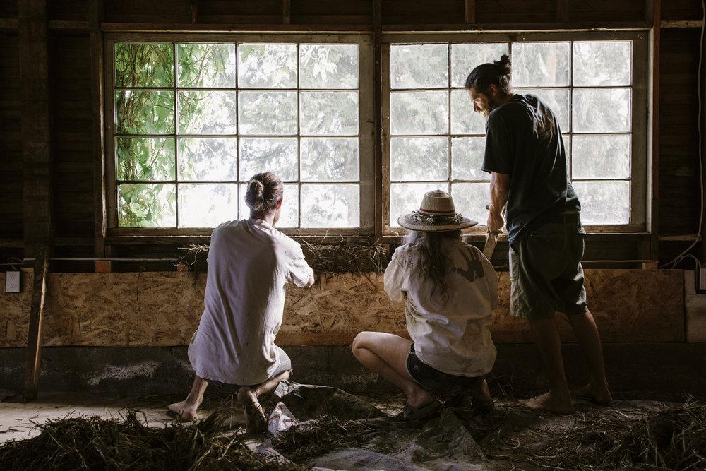 natural building workshop-13.jpg